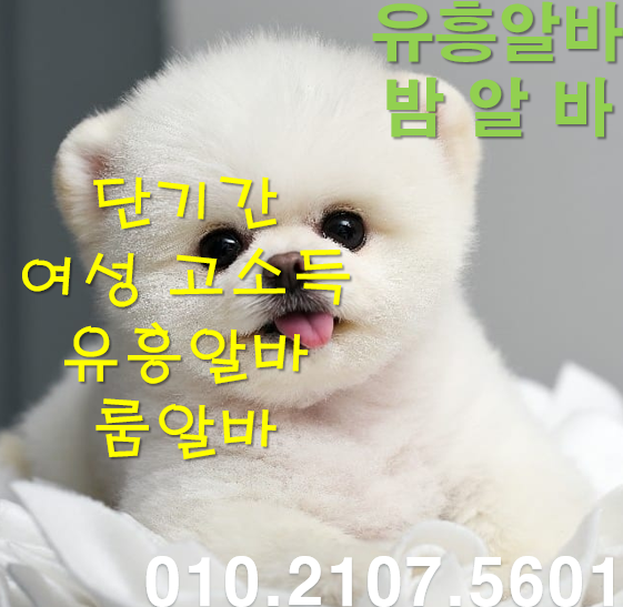 img_00_메인이미지.png